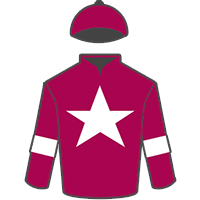 Tiger Roll jockey colours